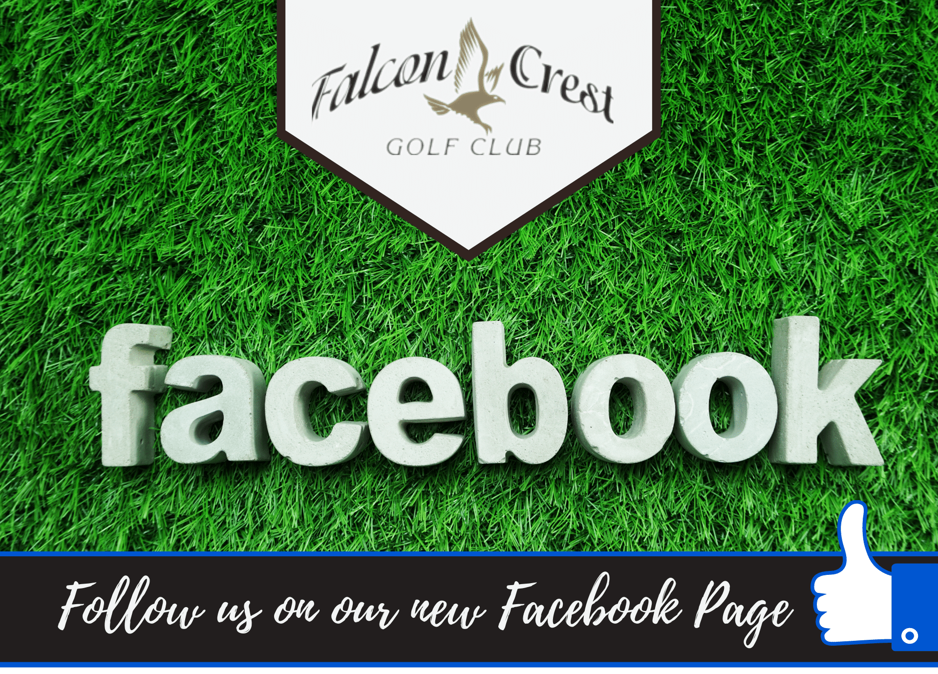 Follow Us on Our New Facebook Page 👍